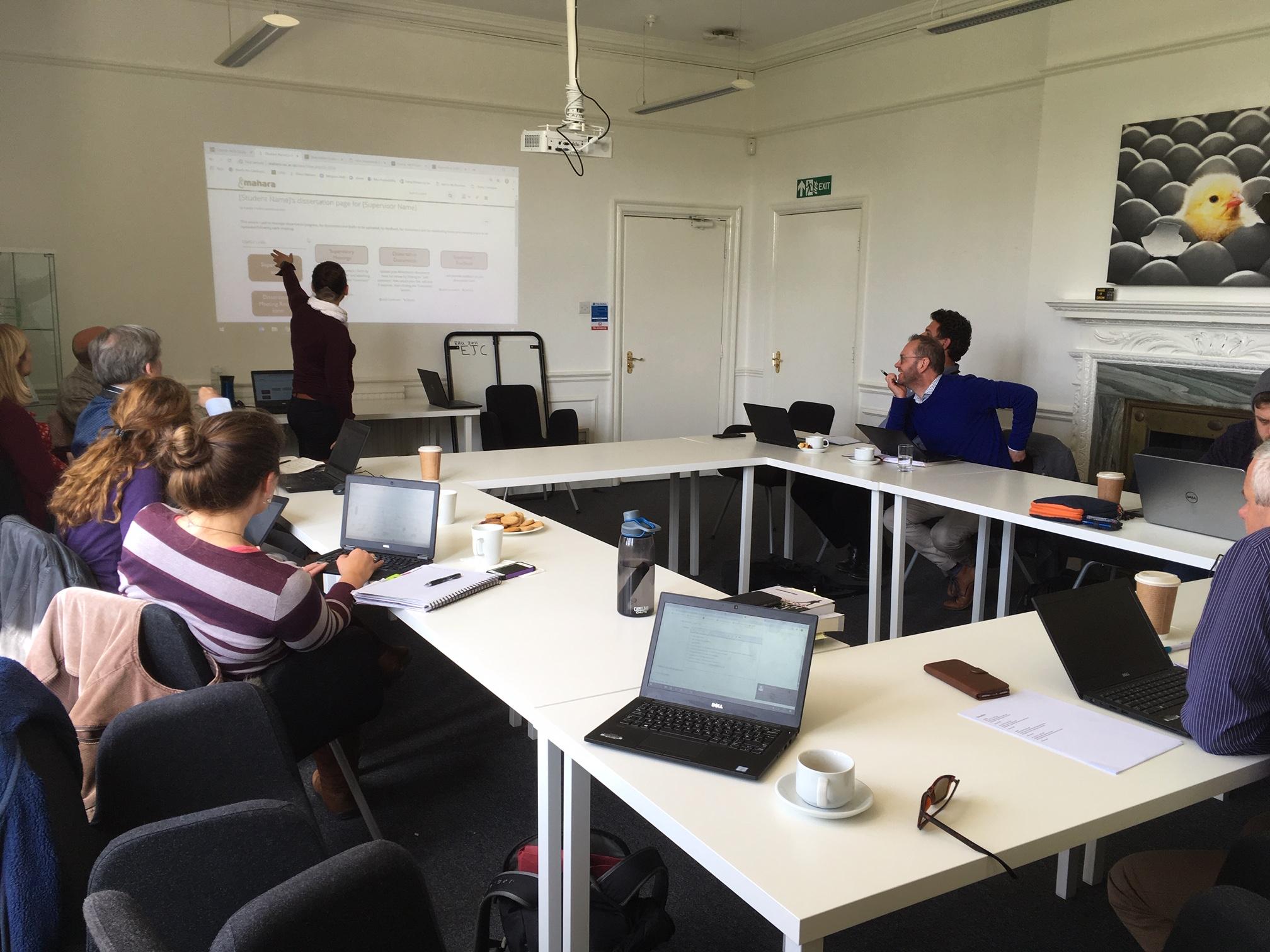 Learning Technologist Aurelie Soulier outlines the dissertation supervision plans for Catalyst