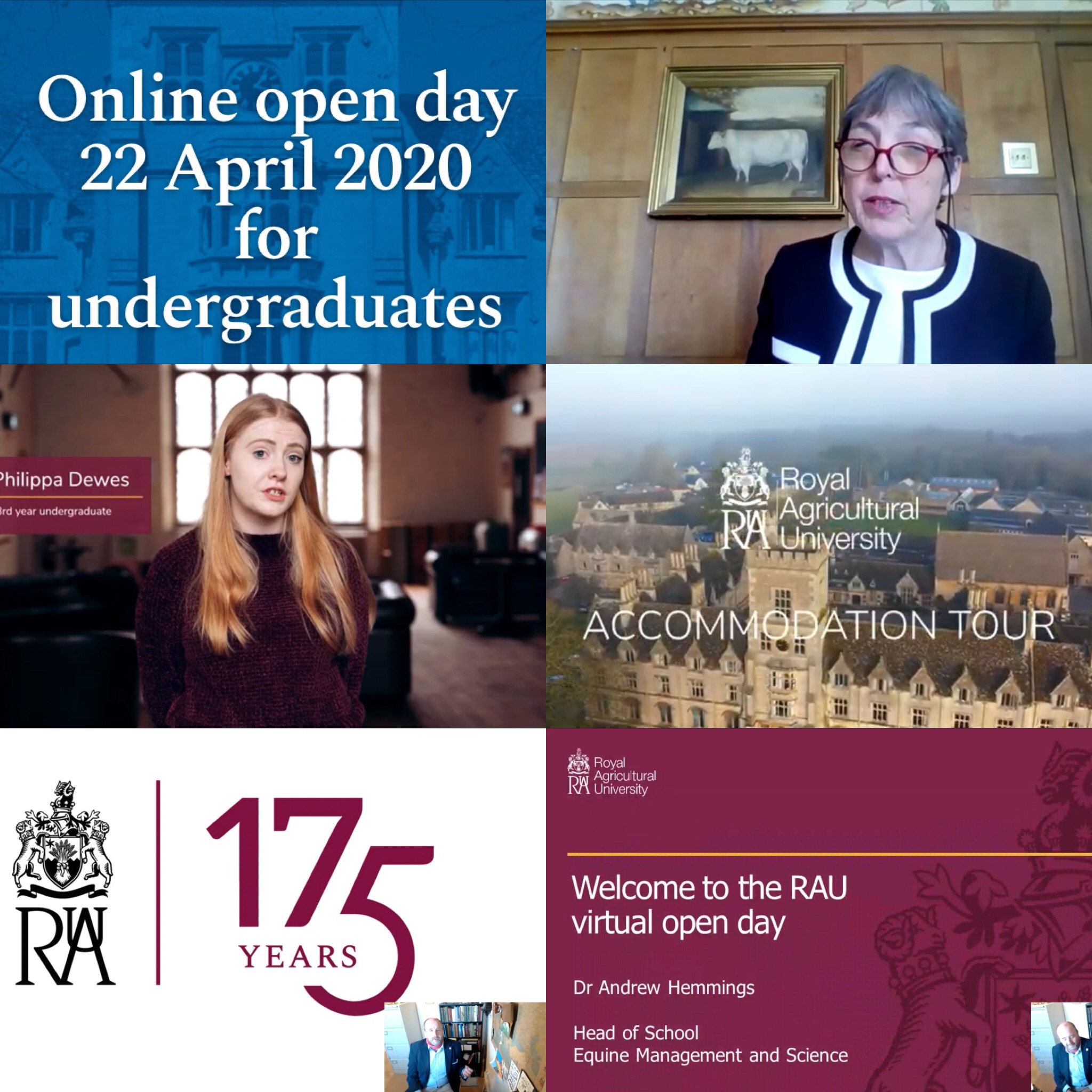 Online open day
