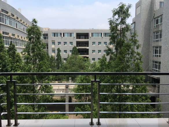 Shandong Agriculture University (SDAU)